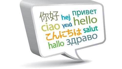 Dịch giả dịch thuật